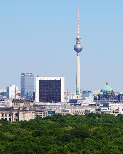wildkräuter kochkurs in berlin